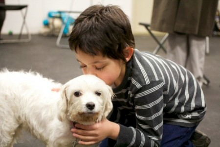 How Kids Can Help Animals