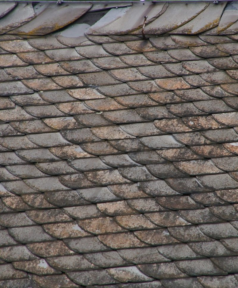 Easy-to-overlook warning signs that your roof is leaking
