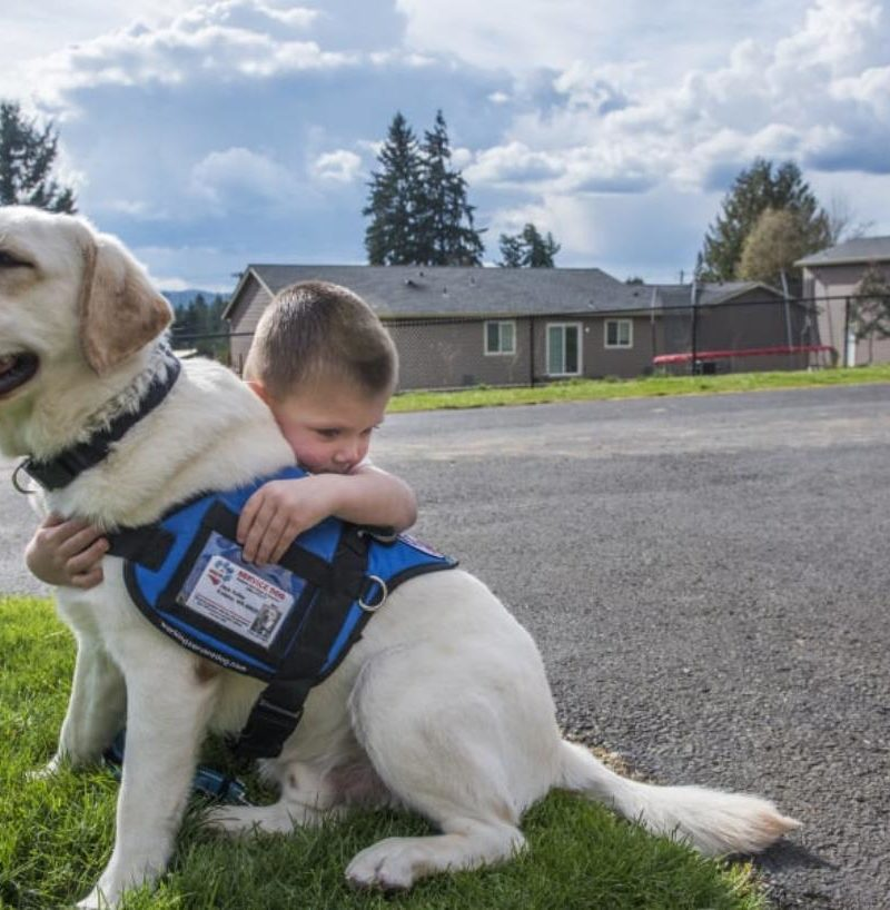 Essential Things You Should Know About Diabetic Service Dogs