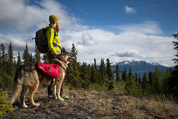 Essentials You Need For an Outdoor Adventure with Your Dog
