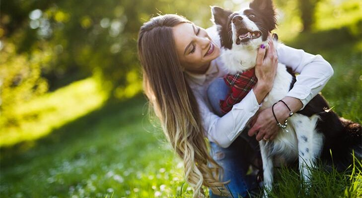 6 Essential Training Items for First-time Dog Owners